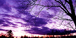 /images/133/1997-10-bruce-trail-purple-pano.jpg - Sunsets > in Ontario (Canada)