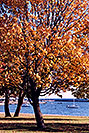 /images/133/1998-08-toronto-lake-view1-v.jpg - #00140: fall in Toronto … August 1998 -- Toronto, Ontario.Canada