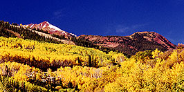 /images/133/1999-09-snowmass-yellow-pano.jpg - #00434: Fall colors in Snowmass Village  … Sept 1999 -- Snowmass Village, Colorado