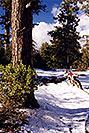 /images/133/2000-04-xr-crown-snow3-v.jpg - #00487: my Honda XR400 near Crown King … April 2000 -- Crown King, Arizona