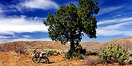 /images/133/2000-04-xr-tangerine2-pano.jpg - #00493: my Honda XR400 … parked on a hill (kickstarter broke) … April 2000 -- Tucson, Arizona
