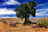 /images/133/2000-04-xr-tangerine2.jpg - #00492: my Honda XR400 … parked on a hill (kickstarter broke) … April 2000 -- Tucson, Arizona