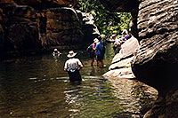 /images/133/2000-05-sedona-canyon-water.jpg - #00491: hiking club wading in Wet Beaver Creek … May 2000 -- Sedona, Arizona