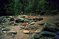 /images/133/2000-08-sedona-west-fork1.jpg - #00600: West Fork Trail in Sedona … April 2000 -- Sedona, Arizona
