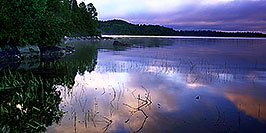 /images/133/2000-09-tema-island-morning2-pano.jpg - #00684: morning at Lake Temagami … Sept 2000 -- Lake Temagami, Temagami, Ontario.Canada