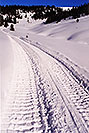 /images/133/2001-01-07-snowcat-tracks-v.jpg - #00738: morning at 11,500ft … Jan 2001 -- Leadville, Colorado