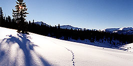 /images/133/2001-01-leadville-sun-morning-pano.jpg - #00752: Morning at 11,500ft … Jan 2001 -- Chalk Mountain, Leadville, Colorado