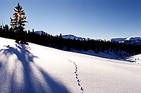 /images/133/2001-01-leadville-sun-morning.jpg - #00750: Morning at 11,500ft … Jan 2001 -- Chalk Mountain, Leadville, Colorado