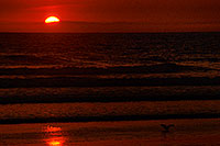 /images/133/2001-03-cali-orange-bird-su.jpg - #00767: Sunset at Huntington Beach … March 2001 -- Huntington Beach, California