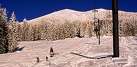 /images/133/2001-03-snowbowl-dogs-pano.jpg - #00774: Big snow at Snowbowl … Humphreys Peak in the background … March 2001 -- Humphreys Peak, Snowbowl, Arizona