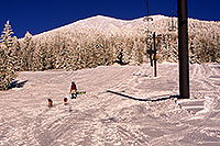 /images/133/2001-03-snowbowl-dogs.jpg - #00773: Big snow at Snowbowl … Humphreys Peak in the background … March 2001 -- Humphreys Peak, Snowbowl, Arizona