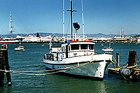 /images/133/2001-07-sfrisco-ship.jpg - #00854: San Francisco harbor … July 2001 -- San Francisco, California