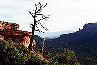/images/133/2001-08-sedona-long-can1.jpg - #00879: Long Canyon … August 2001 -- Sedona, Arizona