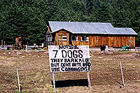 /images/133/2002-05-flagstaff-7dogs.jpg - #00946: 7 dogs … near Flagstaff … May 2002 -- Flagstaff, Arizona