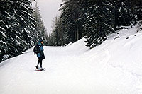 /images/133/2003-02-snowbowl-snowshoer.jpg - #01121: Snowshoer at Snowbowl … Feb 2003 -- Snowbowl, Arizona