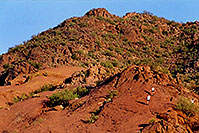 /images/133/2003-03-camelback-trail4.jpg - #01132: trail up Camelback Mountain … March 2003 -- Camelback Mountain, Phoenix, Arizona