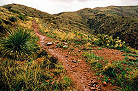 /images/133/2003-03-reavis-rain5.jpg - #01158: wet Reavis Ranch Trail in Superstition Mountains … March 2003 -- Superstitions, Arizona