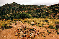 /images/133/2003-03-reavis-trail3.jpg - #01161: wet Reavis Ranch Trail in Superstition Mountains … March 2003 -- Superstitions, Arizona