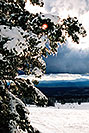 /images/133/2003-03-snowbowl-down1-v.jpg - #01172: Snowbowl ski area … March 2003 -- Snowbowl, Arizona