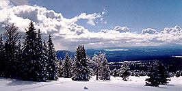 /images/133/2003-03-snowbowl-down3-w.jpg - #01175: Snowbowl ski area … March 2003 -- Snowbowl, Arizona
