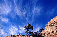/images/133/2003-03-tucson-inspir-rock1.jpg - #01193: Inspiration Rock, St. Catalina Mountains … March 2003 -- St Catalina Mountains, Tucson, Arizona