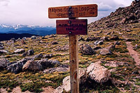 /images/133/2004-06-mtevans-trail49.jpg - #01599: Alpine Gardens Trail #49 at 12,000ft … June 2004 -- Mt Evans, Colorado