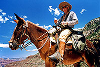 /images/133/2004-07-grand-horseback-amigo.jpg - #01684: Horseback riding guide in Grand Canyon … July 2004 -- Bright Angel Trail, Grand Canyon, Arizona