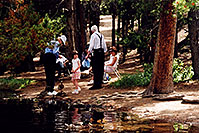 /images/133/2004-07-rocky-people-woods.jpg - #01790: ducks at Sprague Lake … July 2004 -- Sprague Lake, Rocky Mountain National Park, Colorado