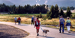 /images/133/2004-08-yello-faith-dog.jpg - #02044: Old Faithful to the right, other geysers in the background … August 2004 -- Old Faithful Geyser, Yellowstone, Wyoming