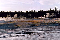 /images/133/2004-08-yello-geyser05.jpg - #02055: Yellowstone geysers … August 2004 -- Yellowstone, Wyoming
