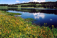 /images/133/2004-08-yello-indian-pond1.jpg - #02065: Indian Pond by Yellowstone Lake … August 2004 -- Indian Pond, Yellowstone, Wyoming