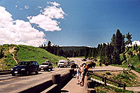 /images/133/2004-08-yello-tourists1.jpg - #02080: Buffalo herd after crossing Fishing Bridge … August 2004 -- Yellowstone, Wyoming