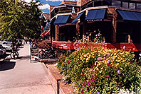 /images/133/2004-09-aspen-flowers.jpg - #02099: Flowers and people in Aspen … Sept 2004 -- Aspen, Colorado
