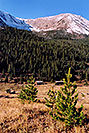 /images/133/2004-09-indep-tree-mtn-v.jpg - #02123: ghost town of Independence … Sept 2004 -- Independence Pass, Colorado