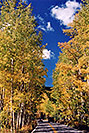 /images/133/2004-09-indep-yellow-road1.jpg - #02139: road from Aspen to Independence Pass … Sept 2004 -- Independence Pass, Colorado