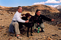 /images/133/2004-09-loveland-dogs5.jpg - #02140: Labrador Retrievers at Loveland Pass … Sept 2004 -- Loveland Pass, Colorado