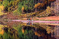 /images/133/2004-09-maroon-people2.jpg - #02189: Maroon Lake with fall colors … Sept 2004 -- Maroon Lake, Maroon Bells, Colorado
