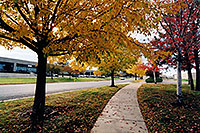 /images/133/2004-10-cent-trees01.jpg - #02248: images of Centennial … Oct 2004 -- Centennial, Colorado