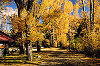 /images/133/2004-10-crested-almont4.jpg - #02279: Fall in Almont … October 2004 -- Almont, Colorado