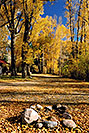 /images/133/2004-10-crested-almont6.jpg - #02281: Fall in Almont … October 2004 -- Almont, Colorado