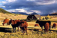 /images/133/2004-10-crested-evening3.jpg - #02275: evening in Crested Butte, looking south … Oct 2004 -- Crested Butte, Colorado