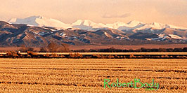 /images/133/2005-03-blanca-mountains-east-pano.jpg - #02429: Mountains in the east … March 2005 -- Blanca, Colorado