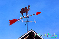 /images/133/2005-03-durango-camel-roof.jpg - #02451: camel windmeter and compass … images of Durango … March 2005 -- Durango, Colorado