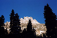 /images/133/2005-03-ouray-morn-trees.jpg - #02520: morning in Ouray … March 2005 -- Ouray, Colorado