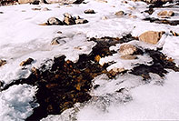 /images/133/2005-03-rockmtn-river-snow.jpg - #02527: Rocky Mtn National park, near Estes Park … March 2005 -- Alluvial Fan, Rocky Mountain National Park, Colorado