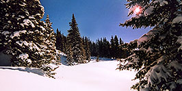 /images/133/2005-03-wolfcreek-trees1-pa.jpg - #02586: Morning sun peeking while walking knee-deep snow … March 2005 -- Wolf Creek Pass, Colorado