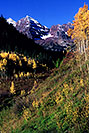 /images/133/2005-09-maroon-meadow-vert1-v.jpg - #02623: images of Maroon Bells … Sept 2005 -- Maroon Bells, Colorado