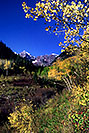 /images/133/2005-09-maroon-meadow-vert2-v.jpg - #02624: images of Maroon Bells … Sept 2005 -- Maroon Bells, Colorado
