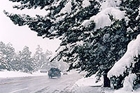 /images/133/2005-10-englewood-snow1.jpg - #02635: images of Englewood … Oct 2005 -- Englewood, Colorado