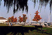 /images/133/2005-10-oakville-harbor5.jpg - #02649: images of Oakville harbour in Ontario … Oct 2005 -- Oakville, Ontario.Canada